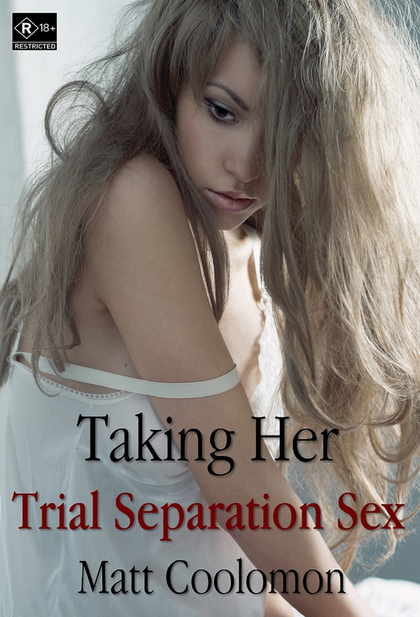 Trial Separation Sex eBook cover